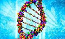 NIH to launch genome editing research program